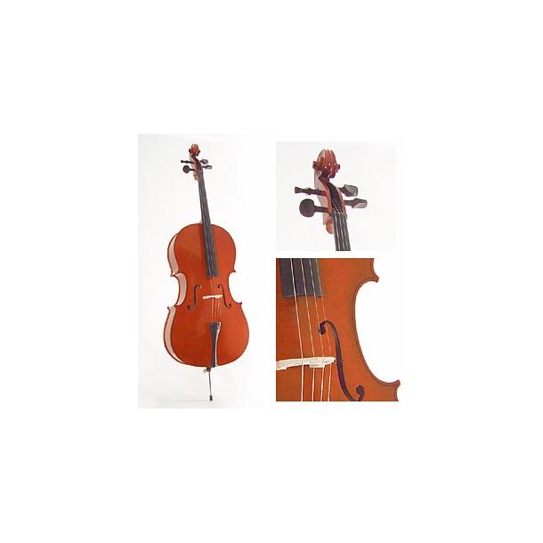 Cello: Inizio Begynder model
