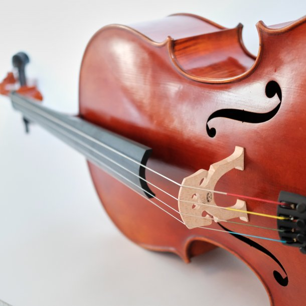 Cello 4/4 Koncertante Custom model Venstrehånds Cello