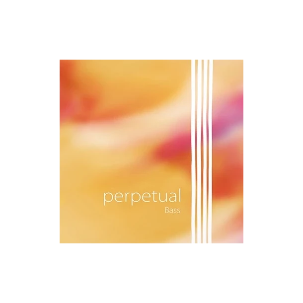 Perpetual Orchestra bass string E