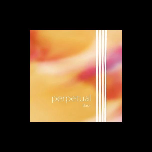 Perpetual Orchestra bass string E